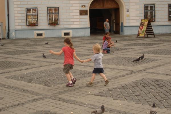 La course aux pigeons Katia