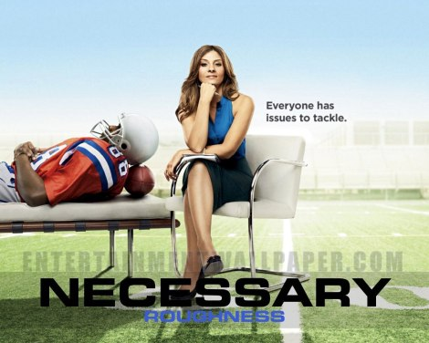 usa-renews-necessary-roughness
