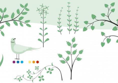 illustration-emilie-vast